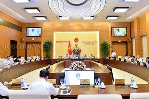 Chưa xem xét Luật Đặc khu trong phiên họp 26 UBTV Quốc hội
