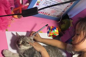 Được cô giáo giao bài tập vẽ con mèo, bé gái bê luôn boss nhà ra 'photo' cho nhanh