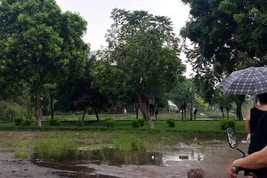 Hà Nội: Phát hiện người đàn ông tử vong trong tư thế treo cổ ở hồ Đền Lừ