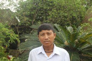 Lão nông xứ Nghệ thu hàng tỷ đồng nhờ ươm trồng cây cảnh