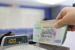 Có 500 triệu nên làm gì để 'tiền đẻ ra tiền'?