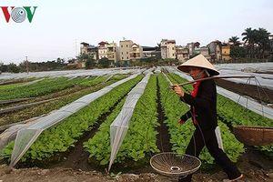 Hiến kế hút doanh nghiệp đầu tư vào nông nghiệp