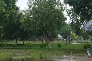 Phát hiện thi thể người đàn ông trong tư thế treo cổ ở hồ Đền Lừ, Hà Nội