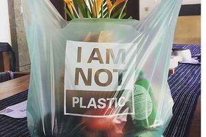 Túi nilon làm từ vỏ tôm, cua và thực vật