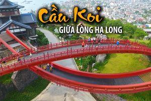 Đổ xô đến cây cầu Koi ở Hạ Long để sống ảo