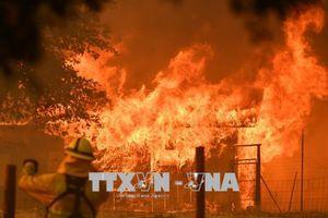 Huy động ngân quỹ liên bang, đối phó thảm họa cháy rừng tại California, Mỹ