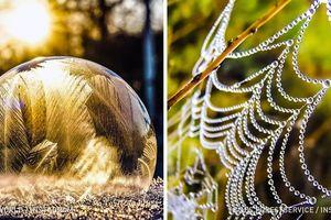 Ngay hôm nay, hãy tải 15 bức ảnh thiên nhiên đẹp 'mê hồn' này về làm hình nền desktop