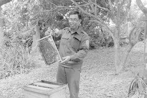 Hiệu quả nghề nuôi ong lấy mật ở huyện Cẩm Thủy