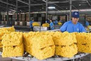 Cao su chưa thoát đà giảm giá, 7 tháng kim ngạch xuất khẩu chỉ đạt 1 tỷ USD