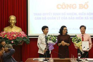 BHXH Việt Nam điều động, bổ nhiệm nhiều nhân sự mới