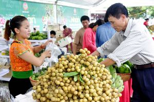 Xuất khẩu trái cây: Dễ mà khó!