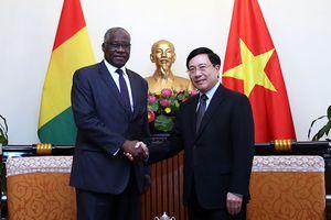 Việt Nam mở rộng quan hệ hợp tác nhiều lĩnh vực với Guinea