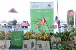 Muốn nông sản 'vi vu' thế giới, người Việt phải học cách 'lập chợ'