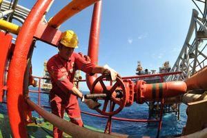 Lấy ý kiến bổ sung thuế dầu thô và khí thiên nhiên vào Luật Quản lý thuế