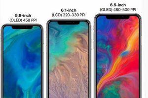 iPhone 6.1inch sẽ chạy 2 SIM, độc quyền ở thị trường Trung Quốc?