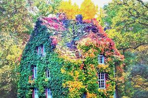 Những ngôi nhà đẹp như trong truyện cổ tích