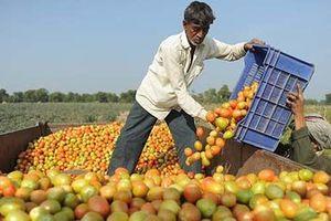 Chỉ 300 DN Việt đủ năng lực tham gia chuỗi cung ứng toàn cầu: Nguyên nhân?
