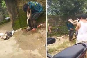'Cẩu tặc' bị đánh hội đồng, treo xác chó lên cổ