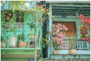Giữa TP Long Xuyên có một ngôi nhà xanh mát và bình yên đến lạ