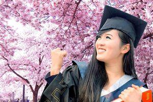 Bộ GD&ĐT thông báo tuyển cán bộ đào tạo thạc sĩ tại Nhật Bản
