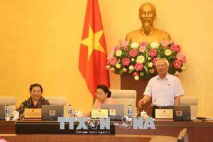 Quốc hội thống nhất mở rộng phạm vi sửa đổi, bổ sung Luật Giáo dục