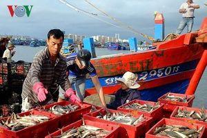 Truy xuất nguồn gốc thủy, hải sản giúp tăng thu nhập ngư dân