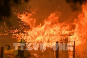 Hàng chục nghìn lính cứu hỏa chống chọi với các đám cháy rừng ở Mỹ