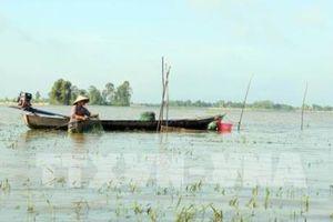 Công điện về chủ động ứng phó, giảm thiểu thiệt hại mưa lũ tại một số tỉnh ĐBSCL