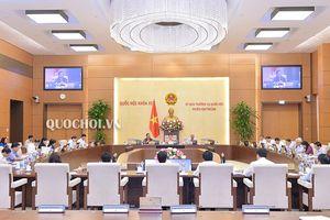 Ủy ban Thường vụ Quốc hội cho ý kiến một số vấn đề lớn của dự án Luật Giáo dục