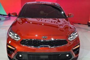 Ô tô nguyên chiếc nhập khẩu vào Việt Nam tăng mạnh ngay đầu tháng