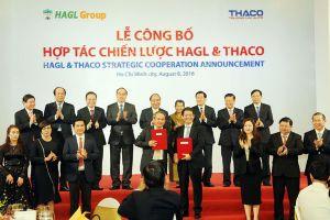 THACO rót hàng ngàn tỉ đồng cứu Hoàng Anh Gia Lai