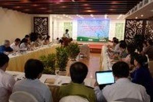 Hướng đi bền vững trong quản lý bảo vệ rừng và thương mại lâm sản