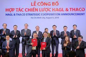 Hợp tác chiến lược HAGL và Thaco: Ô tô Trường Hải rót 12.000 tỷ vào HAGL