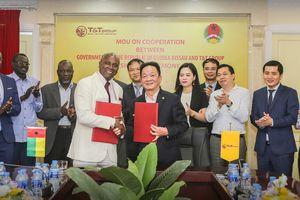 T&T Group dự kiến mua toàn bộ điều thô của Guinea Bissau
