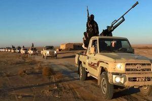 Syria không kích phá hủy đoàn vận tải quân sự lớn của IS