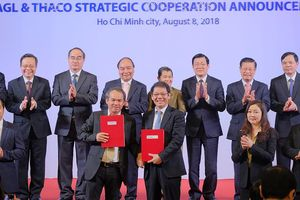 Thaco - HAGL: Mối nhân duyên môn đăng hộ đối