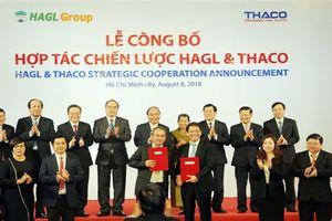 Thaco hợp tác chiến lược với Hoàng Anh Gia Lai