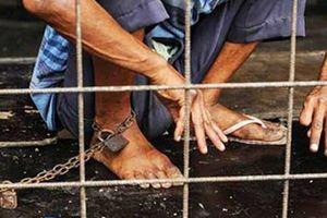 Làm giả hồ sơ tâm thần cho 'đại ca'giang hồ, 2 người bị bắt giữ