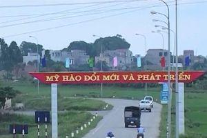 Huyện đầu tiên của Hưng Yên đạt chuẩn 'Huyện nông thôn mới'