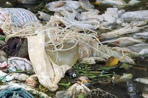 Hà Nội: Lũ rút, người dân vùng lụt lại thêm nỗi lo về rác thải nguy hại