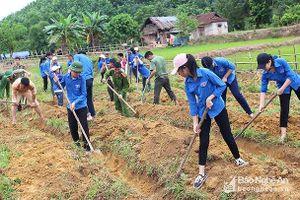 BẢN TIN TÌNH NGUYỆN: Hàng trăm thanh niên lao động giúp bản nghèo