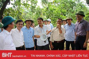 Các địa phương tham quan, kiểm tra chéo công tác xây dựng nông thôn mới