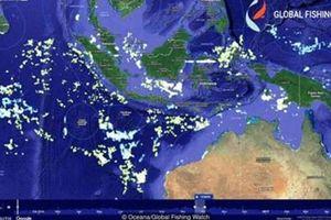 Ứng dụng công nghệ chống nạn khai thác hải sản trái phép