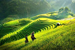 Chủ tịch UBND tỉnh Yên Bái: Quyết tâm xây dựng điểm sáng nông thôn mới giữa núi rừng