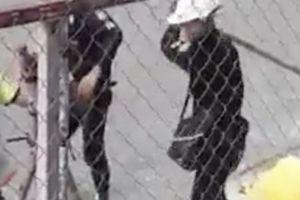 Điều tra hàng chục bảo vệ đánh dã man 2 công nhân ở TPHCM
