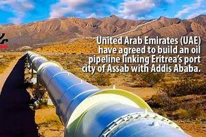 UAE xây dựng đường ống dẫn dầu giữa Eritrea và Ethiopia