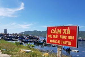 Cảng cá lớn nhất miền Trung đen ngòm vi ô nhiễm