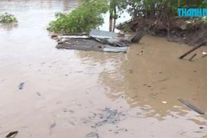 Bến Tre: Sạt lở bờ sông, 2 căn nhà bị cuốn trôi trong đêm