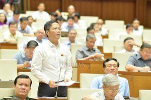Đbqh Hồ Thanh Bình - an giang: biện pháp ứng phó nào cho chính sách bảo hộ thương mại của mỹ?