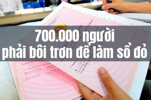 Kinh doanh hôm nay: Bất ngờ cách kiếm tiền tỷ của người dân Côn Đảo, một số người vẫn phải bôi trơn để làm sổ đỏ